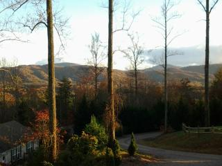 Asheville Mountain, Views, Close to Downtown, NEW