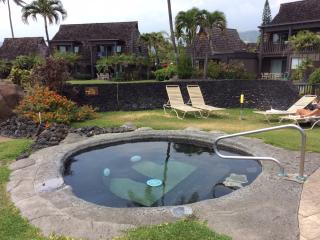 Turtle Huts at Punalu'u Black Sand Beach 5 Star!