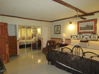 #3 Cool Luxurious 3-Bedroom Apt., Kingston