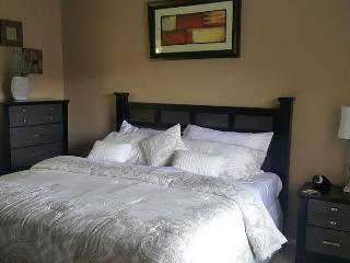 Fully Furnished Corporate Condo, South Houston