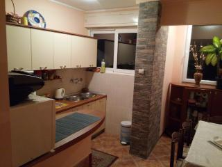 Apartment Rapovac Kotor