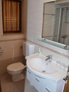A3(2+2): bathroom with toilet