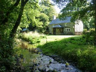 GLANRAFON rural location, extensive grounds, close to river near Ruthin Ref 9312