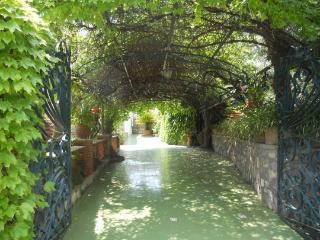 V420 - Nerano, Marina del Cantone