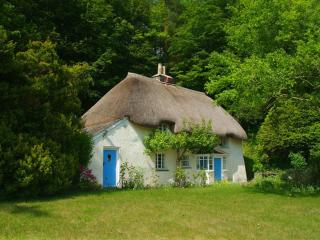 Lew Quarry Cottage, Lewdown, Devon