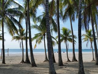 Beach=Front Private Rooms & Retreat in Playa Samara A/C and Breakfast Included