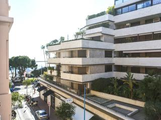 GOLDEN TRIANGLE + PALAIS -  2BR/2BA  -  AC + WIFI, Cannes