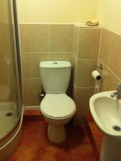 Upstairs Shower room and toilet