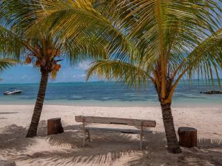 Villa Monica 1 - Luxury Beachfront Living, Roches Noire