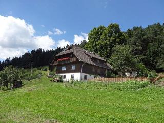 Vacation Apartment in Schramberg - 1399 sqft, bright, modern, comfortable (# 9436), Tennenbronn