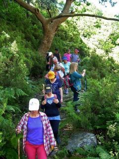 Trekking to the gorge of Dimosaris