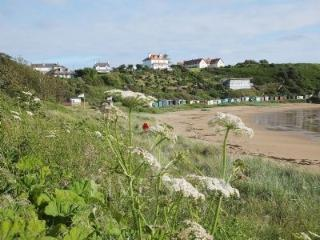 Coldingham Wheelchair Access caravan