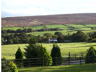 Moorview Cottage Commondale