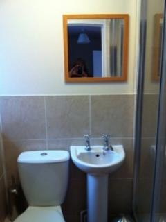 Large Walk in Shower with toilet and wash basin