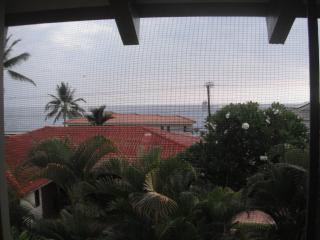 Palm Hale - King Palm