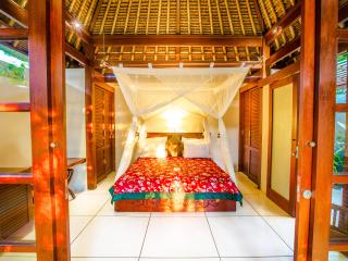LUXURY Villa Jiwa in Ubud ONLY $79!