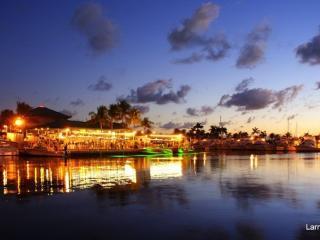 Beautiful Miami Lake House