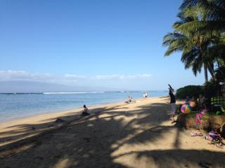 Beautiful Renovated 2BR/1B Lahaina Town, WIFI