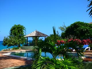 Romantic Luxury Ocean Villa, with Private Maid. Driver/Food/Tours available., Runaway Bay