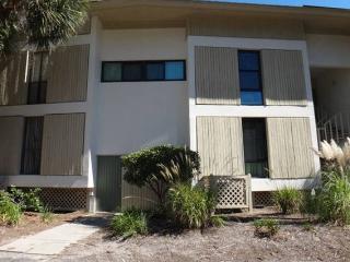 Beautiful South Forest Beach Villa, Hilton Head