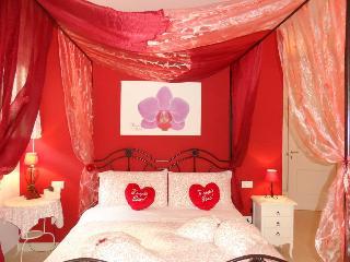beb petali rosa: camera Orchidea