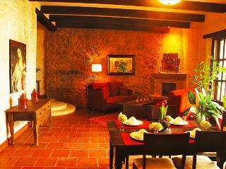 Casa Serenidad - Spacious & Artistic Oasis - Rooftop 360 Degree Volcanic Views