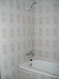 Shower bath tub