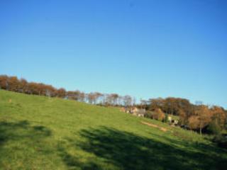 On the Cragside Estate