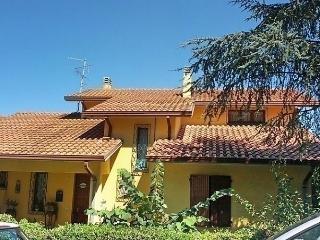 Mauro, Urbino