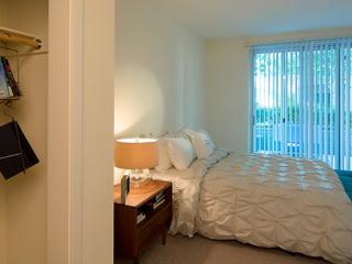 COZY AND BEAUTIFULLY FURNISHED 2 BEDROOM, 2 BATHROOM ECO-FRIENDLY UNIT, Santa Clara