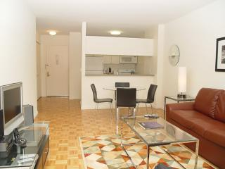 BEAUTIFUL AND MODERN 1 BEDROOM, 1 BATHS APARTMENT, Nueva York