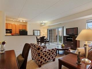 Spacious and Bright 1 Bedroom Apartment in Chicago, Vernon Hills