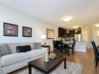 Clean and Lovely 1 Bedroom Evanston Apartment