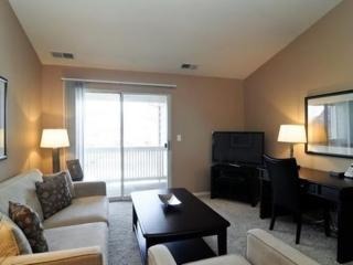 Furnished 2-Bedroom Apartment at Azalea Dr & Burberry Cir Schaumburg