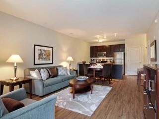 Furnished Apartment at N Cross St & E Wesley St Wheaton