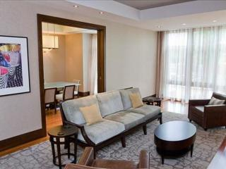 LUXURIOUS 2 BEDROOM APARTMENT IN BETHESDA, Bethesda