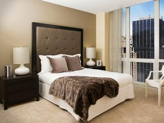 Chic and Trendy 1 Bedroom 1 Bathroom Apartment with Amazing Amenities, Chicago