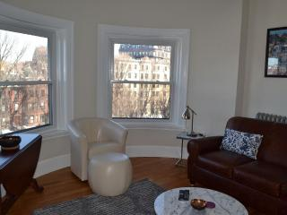 Spectacular 1 Bedroom Apartment -Amazing Views, Roof Deck, King Bed, Boston