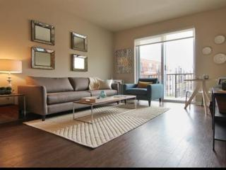 Furnished Apartment at IL-53 & Warrenville Rd Lisle