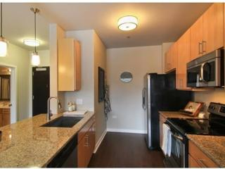 Furnished 2-Bedroom Apartment at IL-53 & Warrenville Rd Lisle