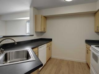Modern Full Kitchen - 1 Bedroom Apartment in Mill Creek