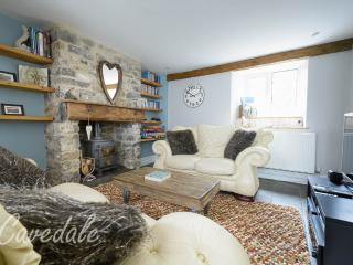 Cosy living room with log burner, 42' TV, Blu ray DVD, Xbox 360, Apple TV with FREE Netflix