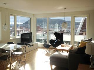 Penhouse Apartment in Historic Centre, Bergen
