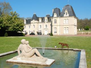 Beautiful château with room  JOKER, Glenouze