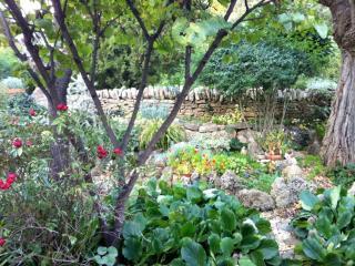 Garden and riverside paradise near Uzes, Vers-Pont-du-Gard