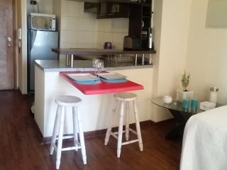 Apartamento central santiago de chile