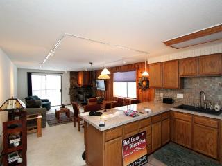 Beautiful, family friendly 2-2 mountain condo