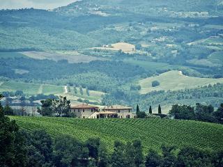Villa Selvamica - Private Comfort in the Vineyards, Orvieto
