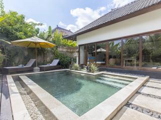 Villa Kami Ubud - Luxurious private villa in ubud