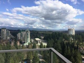 Beautiful View Highrise Condo, Coquitlam